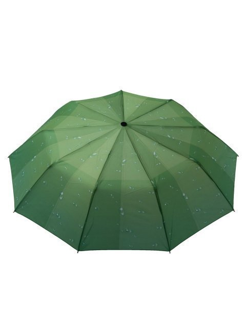 503 500/2 Зонт жен.п/авт-т. Вид 2.