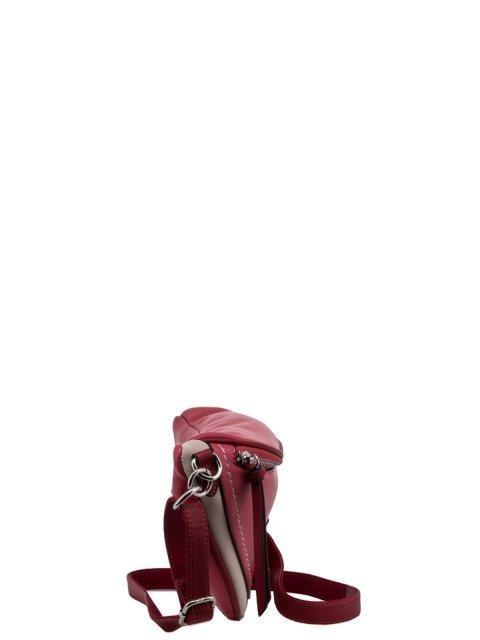 6204-1 04 Сумка женская. Вид 3.